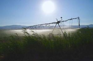 Bewässerungsanlage in Nord Galiläa